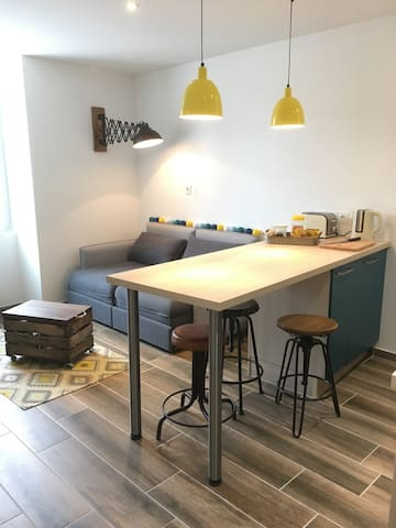 Furnished appartment F2 near Geneva - Collonges - Daire