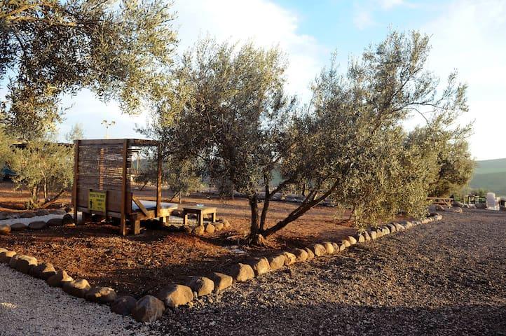 Loria's Lodge - Kfar Kisch - Stuga