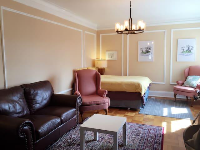 Cozy Home near Washington University & Forest Park - Clayton - Lägenhet