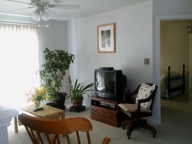 UCONN Hideaway - Tolland - Apartamento