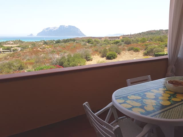 Apartment - 300 m from the beach - Olbia - Appartement