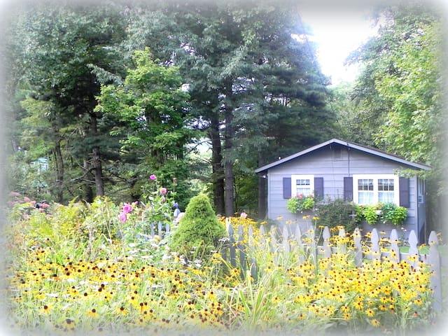 High Cottage Retreat on the Blue Ridge Parkway - Little Switzerland - Hus