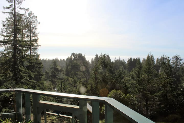 Little Village in the Redwoods. - Gualala - Casa