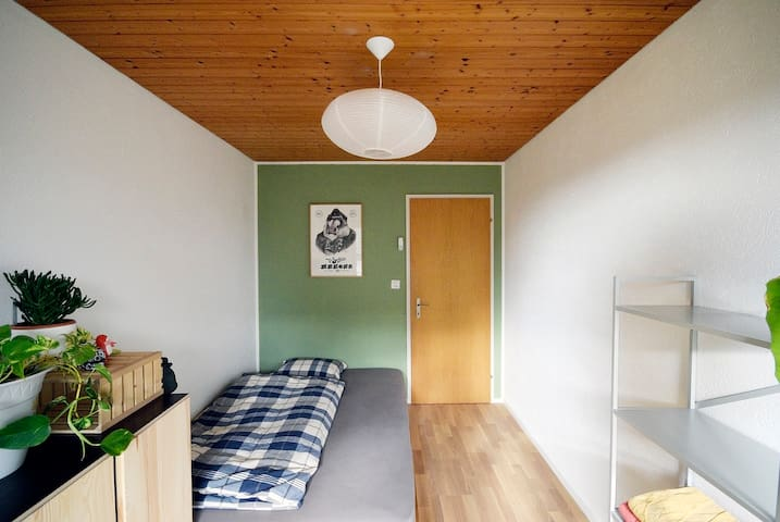 Room for one (or two) - Hombrechtikon - Huis