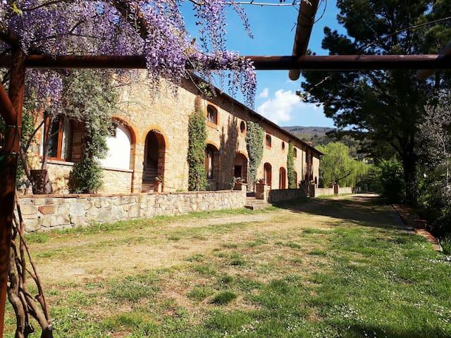Agriturismo Poggitazzi - Vacation inside Nature - Loro Ciuffenna - Apartmen