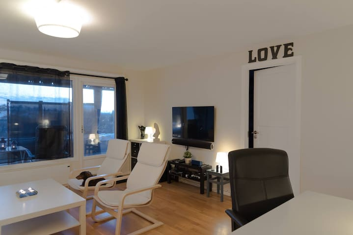 Modern technical spacey 4 room apartment in Oslo - Oslo - Daire