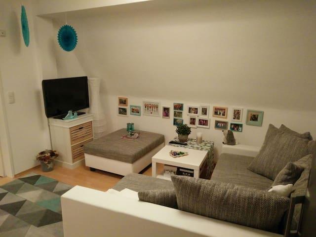 Cozy flat in Rothenburg o.d. Tauber - Rothenburg ob der Tauber