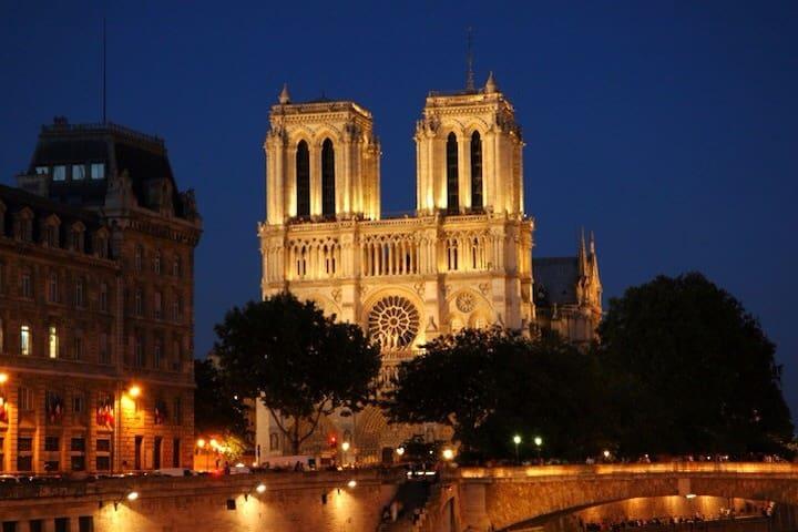 Notre Dame,Le Louvre,Saint Michel.. - París - Pis