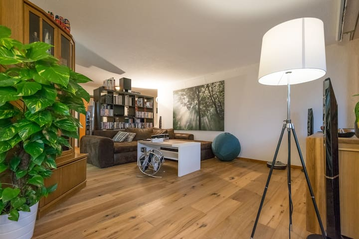 Private guest room for rent with beautiful terrace - Thun - Appartement
