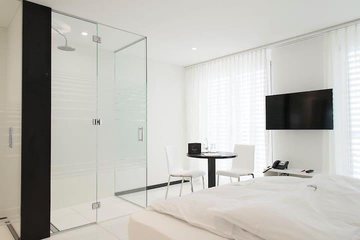 Studio ohne Küchen im Thessoni home - Regensdorf - Casa de huéspedes