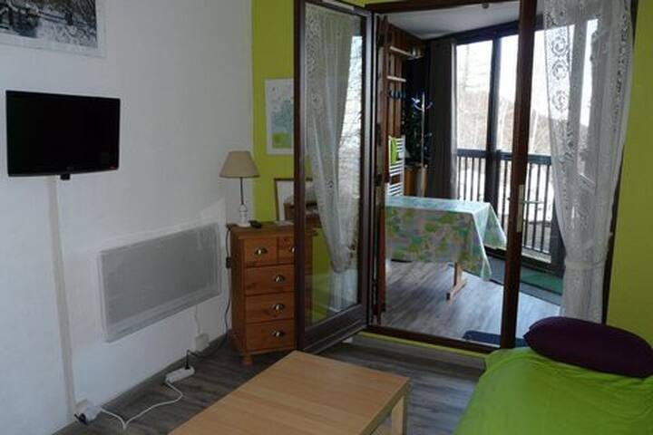 Appart 4-6 pers, ski Monts Olmes 09 - Montferrier - Appartement