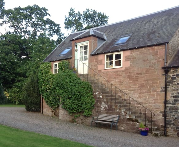 Tranquil self catering cottage. - Minto - Daire