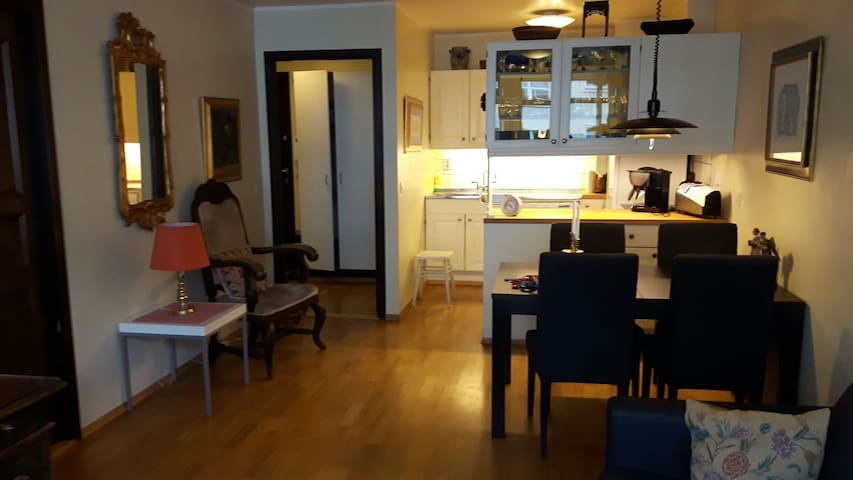 Flat in central - Oslo