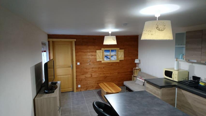 Superbe T2 ensoleillé au coeur de la Haute Savoie - Marnaz - Appartement