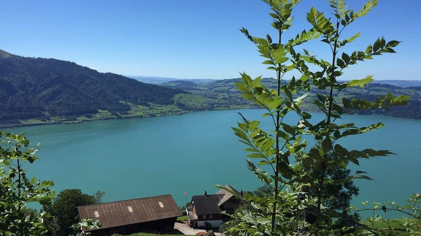 In Landwirtschaft  mit See Sicht - Walchwil - Lägenhet