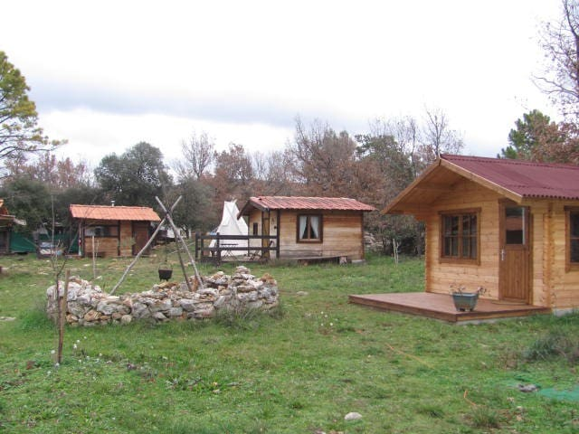 les cabanes de riquier 1 - Moissac-Bellevue - Kulübe