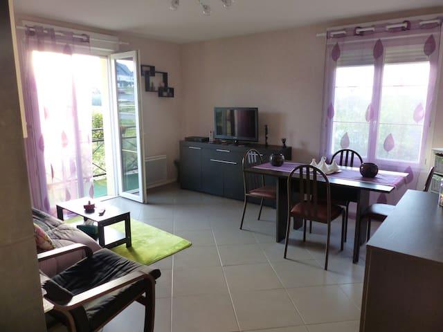 Appartement au bord de la Loire sur Amboise - Amboise - Apartemen
