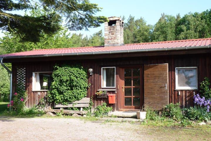 """Idyllisches  Ferienhaus """"Zur Alten Försterei"""" - Bienenbüttel - Bungalow"""