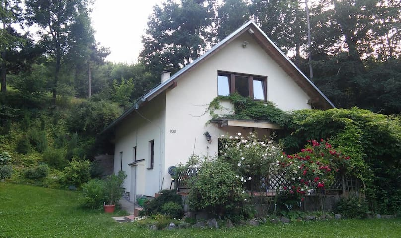 Nature house, near Prague&Karlstejn - Mořina - Ev