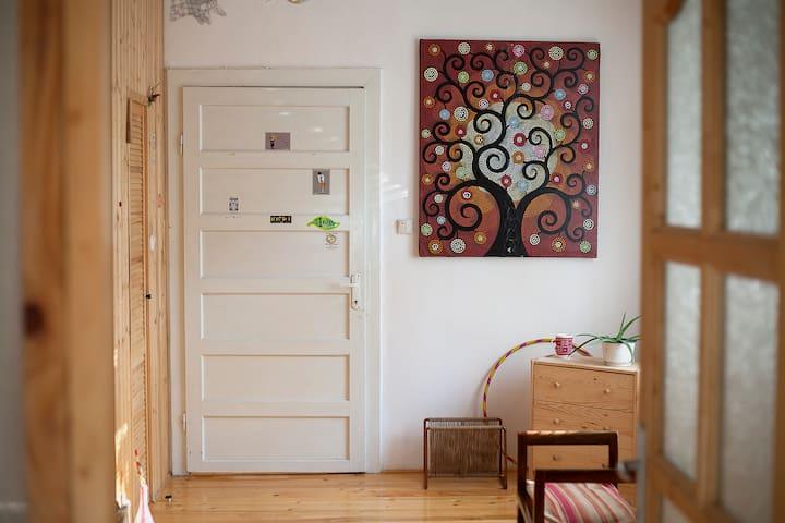 The Wooden Room - Private studio - Timișoara - Huis
