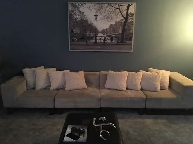 Nice comfortable Couch - Philadelphia  - Appartement