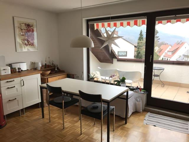 schöne, helle, möblierte Wohnung in Miltenberg - Miltenberg - Leilighet
