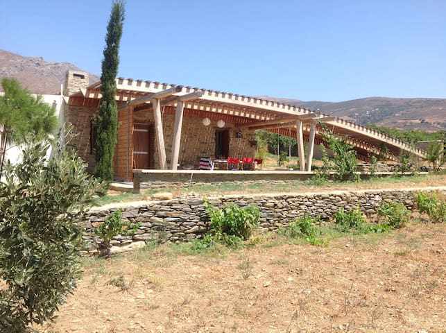 Bioclimatic land house in Andros - Andros