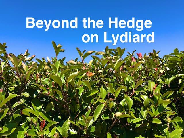 Beyond the Hedge on Lydiard - Ballarat North - Domek parterowy