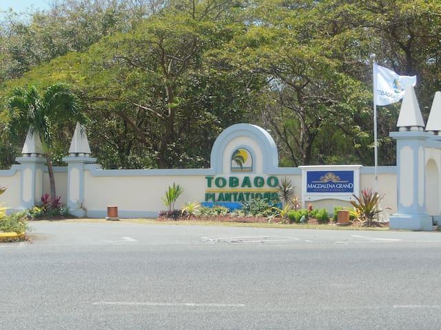 A suite piece of Paradise at Tobago Plantations - Scarborough - Misafir suiti
