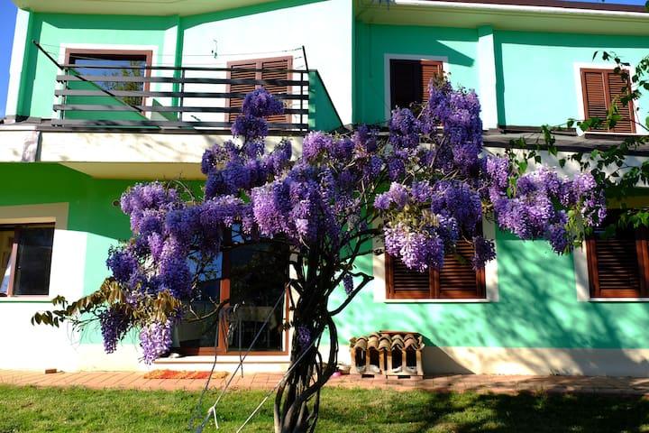 Villa/Appartamento Acero Campestre - Scoppito