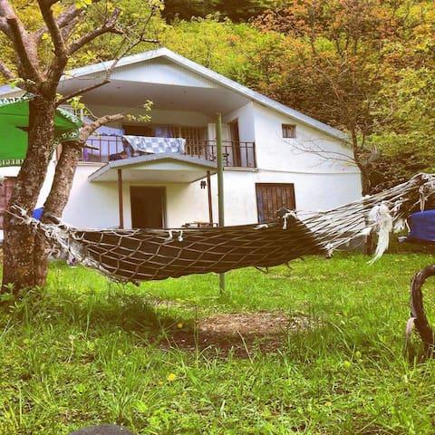 cottage house,(mountain side) - Dusheti - Vila