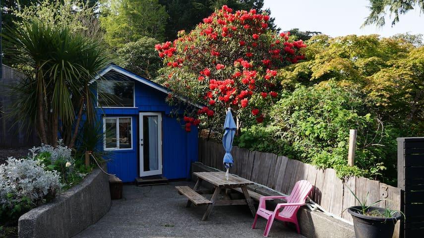 The Blue Cabin harbour side accom - Tofino - Kabin
