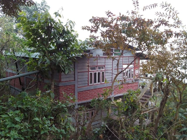 NAGRI HOME STAY - Nagri Farm Tea Garden - Appartement