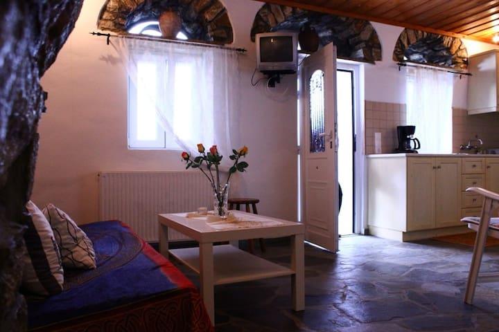 Beautiful house in mountain village - Skalados
