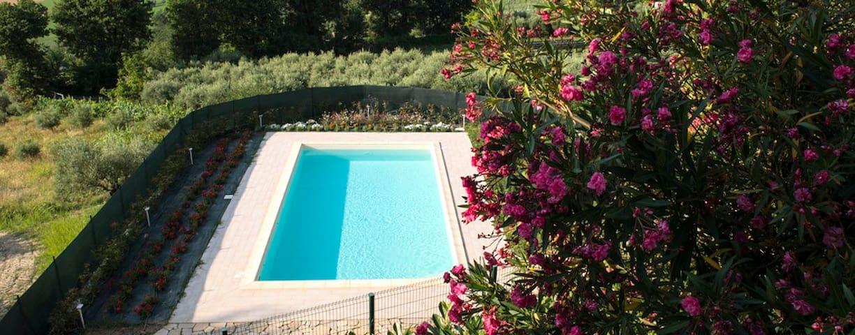 Camera doppia in b&b con piscina e ristorante - Mogliano