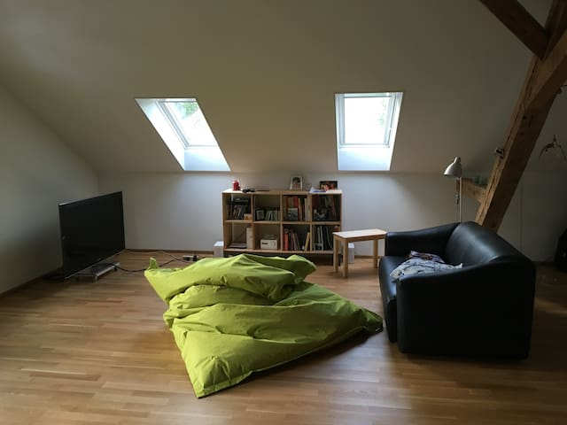 Renovated 1877 apartment in the Emmental - Oberdiessbach