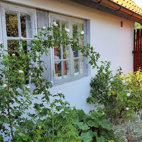 Charming cottage near the sea ! - Lerberget - Houten huisje