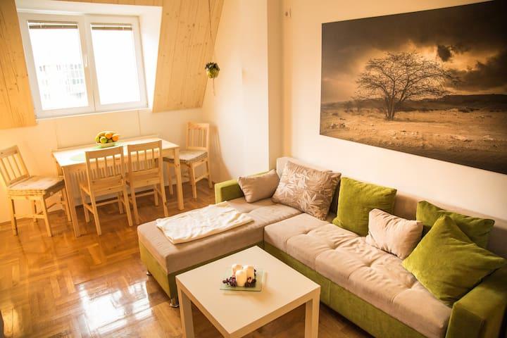 Brand New 1-Bedroom Apartment in the City Center - Skopje - Apartemen