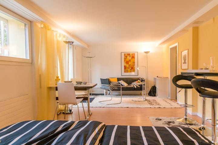 Quiet stylish garden apartment 10 min from center - Muri bei Bern - Huoneisto