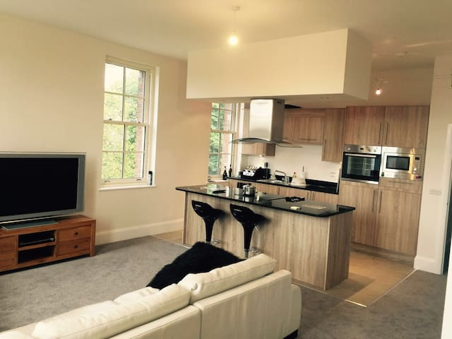 St Georges Mansions Stunning Penthouse Apartment - Stafford