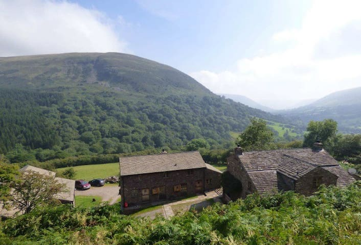 Trwyn Tal Cottage - Capel-y-ffin - Haus