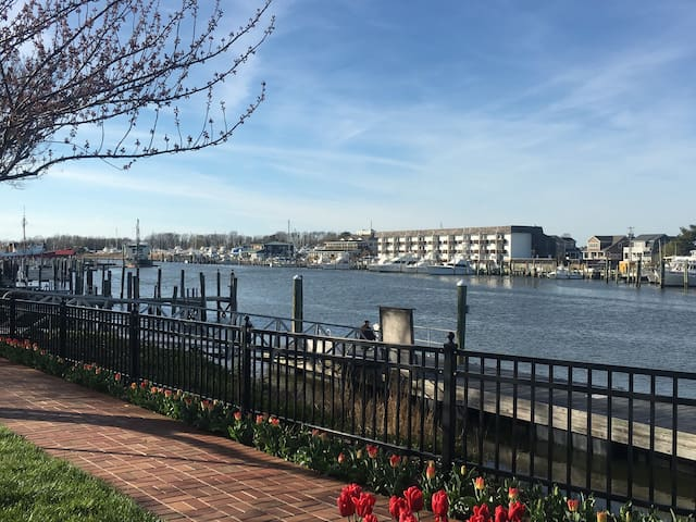 Waterfront  condo downtown Lewes - Lewes - Lyxvåning
