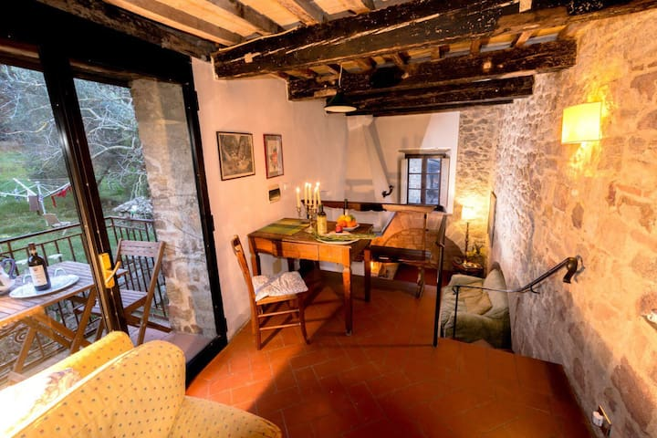 Holiday in an organic historic farm - Apartment 2p - Roccastrada - Appartement