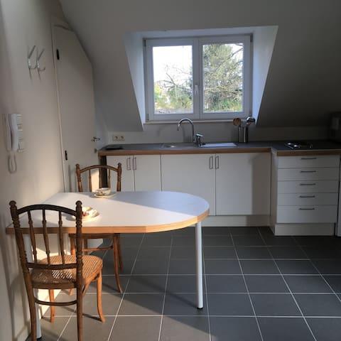 studio très lumineux  et très calme à Woluwe - Woluwe-Saint-Lambert - Leilighet