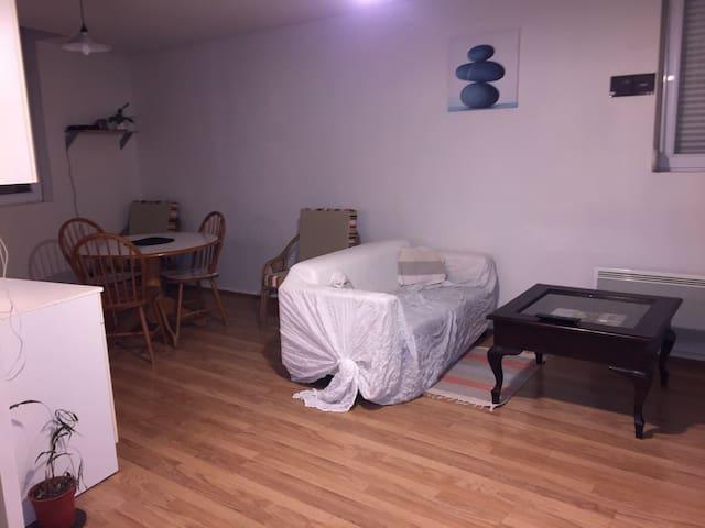 Appartement centre Valenciennes - Valenciennes - Huoneisto