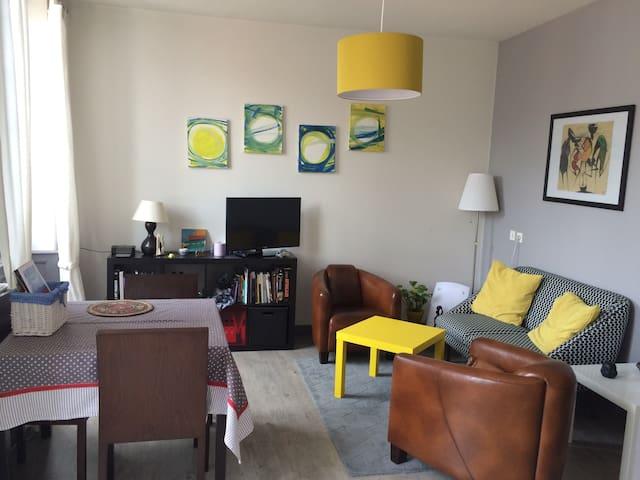 Bel appartement cocooning en centre ville de Riom - Riom - Appartement