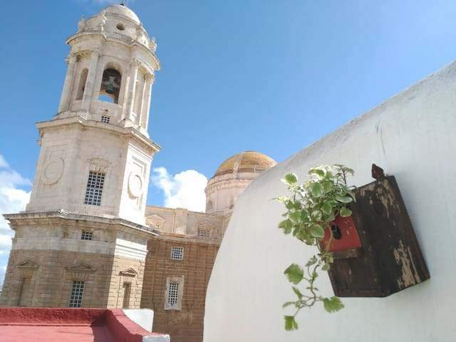 Private sunny terrace overlooking Cadiz cathedral - 加的斯 - 公寓