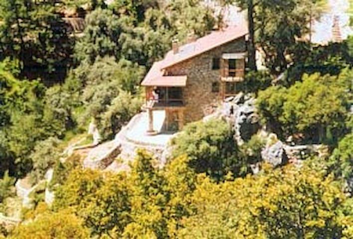 TASEVI  (a verry verry special home) - Ölüdeniz Belediyesi - Huis