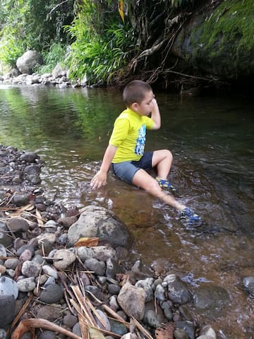 Tourism Rural & Recreational - Turrialba - Allotjament sostenible a la natura
