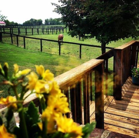Windy Corner Farm - Lexington - Hus